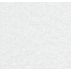 ExpoShow, white 9510