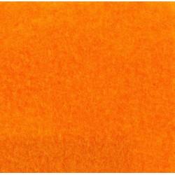ExpoShow, clementine 9557