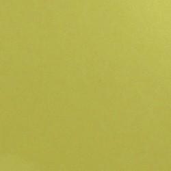 ExpoModa Shiny gold 0103